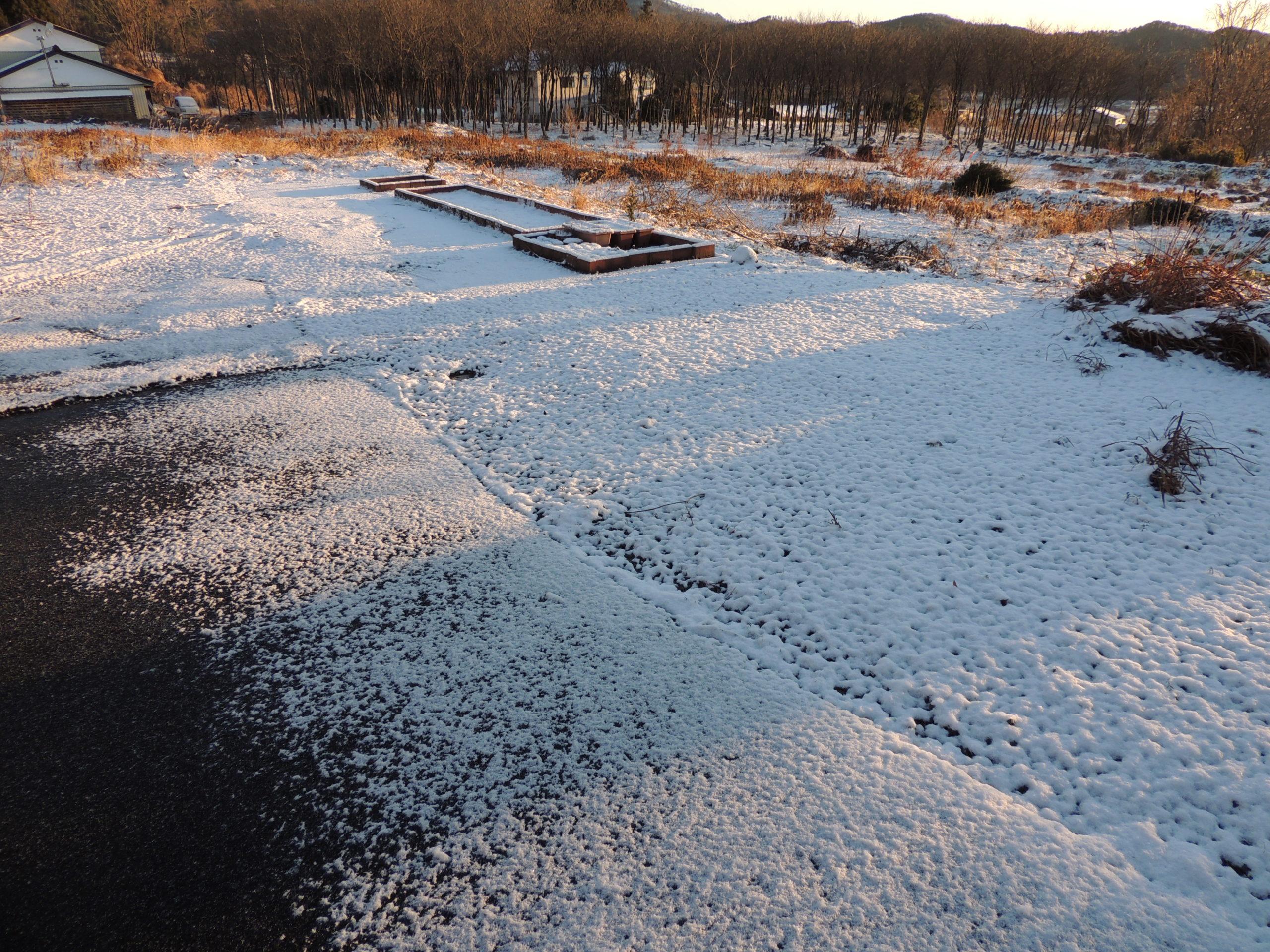 初冠雪&凍結防止タイマー